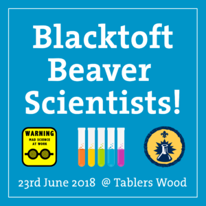 Beaver Scientist Planning Meeting @ The Sandpiper | Melton Park | England | United Kingdom