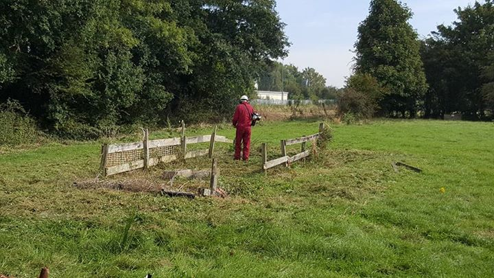 Good progress being made at the Tablers Wood Work Day this morning with the gras...